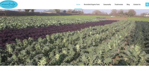 Riversfield Organic Farm
