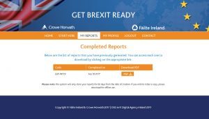 Get Brexit Ready full report page